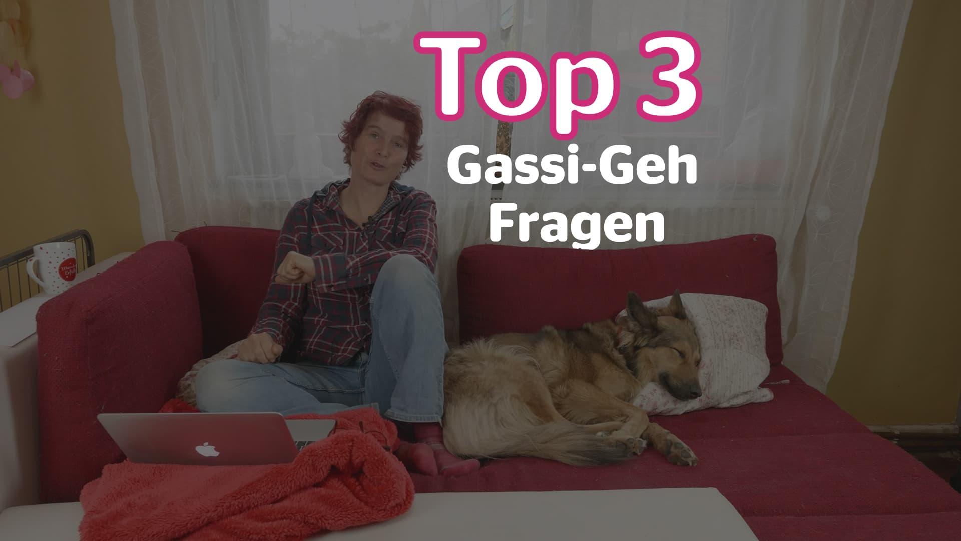 Gassi-Geh Fragen mit Alex Angrick